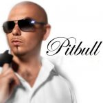 10 min Micromix Pitbull